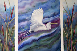 Egret Triptych