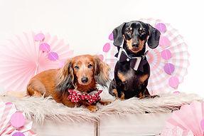 Valentines promo (14)14.jpg