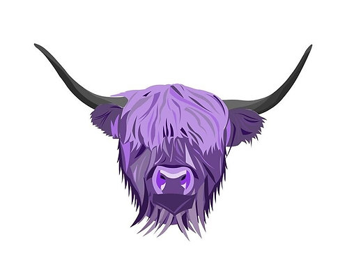 She's Some Nick, Highland Cow Print, A5