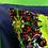 Thumbnail: Art Deco Velvet Cushion, Canary Green, 65cm x 45cm