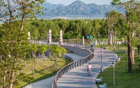 Top Things to do in Shenzhen