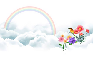 bird_and_rainbow-wide.png