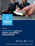 Fraude interno qué es, impacto, señales y prevención.png