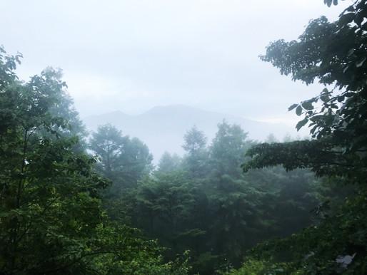 雨の軽井沢―さらば、また会おう。