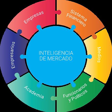 grafico-inteligenciademercado-español.pn