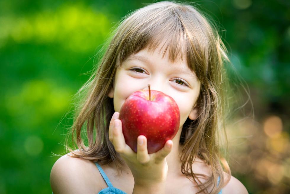 Raluca Ivanescu apple harvest for websharing-12.jpg