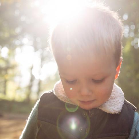 Sweet little boy in early fall light