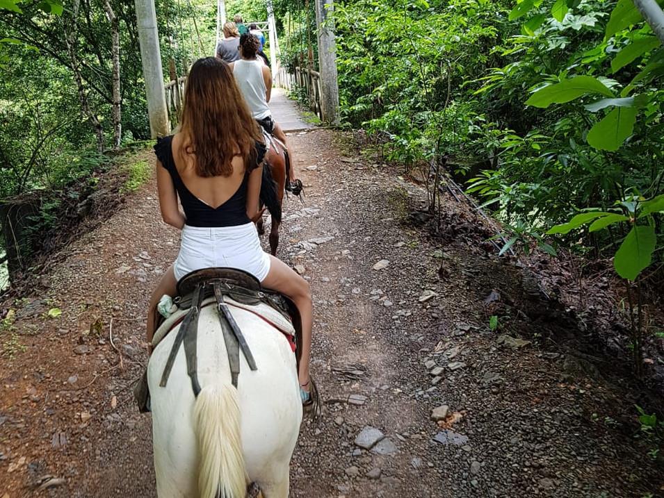 Horseback Tour Option