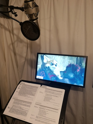 recording voice over
