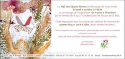 EXPO Mjc des Quatre Bornes METZ