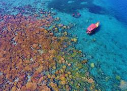 Mambakuni Reef