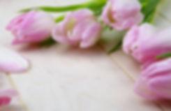 flower-3070161.jpg