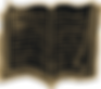 Heraldry_Bookbg_small2.png