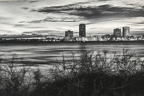 """Baton Rouge Skyline"" 12x24 Cathy Smart"