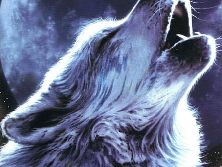 Spirit Animal Totems