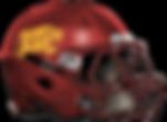 forestpark helmet.png