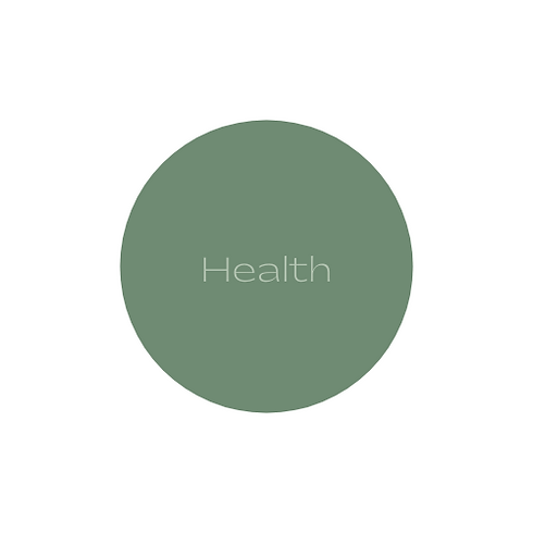 health logo section.png