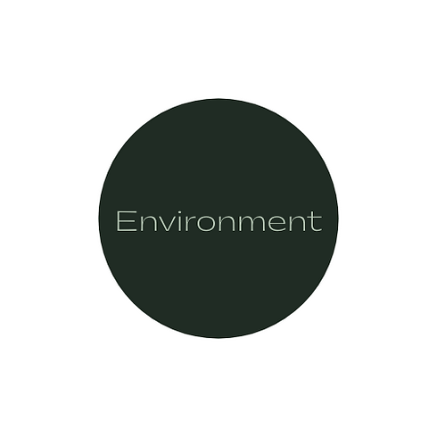 Environment logo section.png