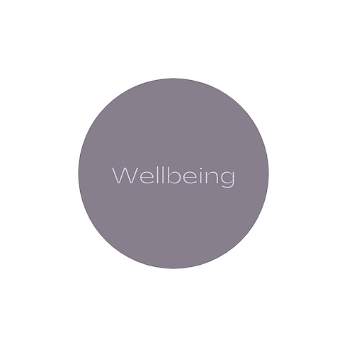 wellbeing logo section.png