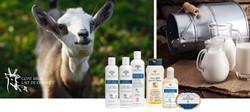 druide goat milk products.jpg
