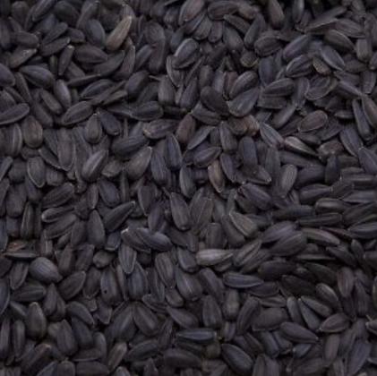 Sunflower Seed, black oil 25 lb. Bag