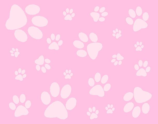 Pinkie Paws