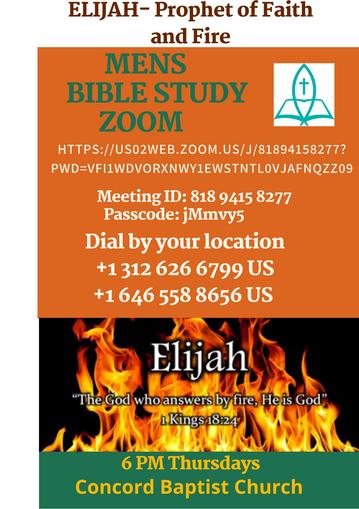 Mens+Bible+Study+Zoom+Generic+REV+04.22.21.png
