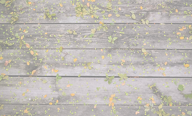 Flowers on Wood_edited_edited.png