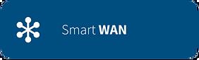 bnt-smart-wan.png