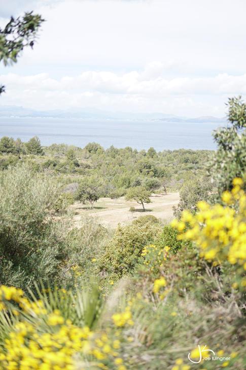Mallorca's wild North