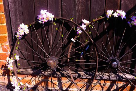 Rustic Wheels