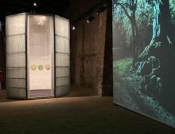 A roof for silence - Hala Wardé