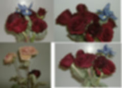freeze dried flowers