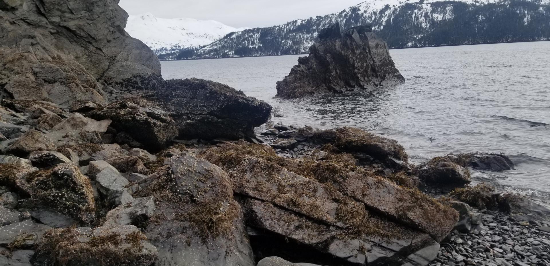 Blackstone Bay, Prince William Sound