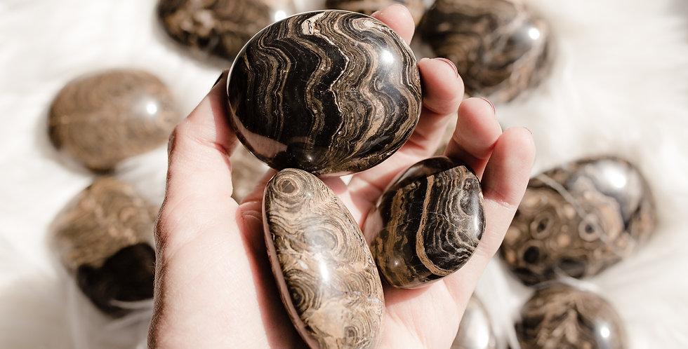 Stromatolite Palmstone