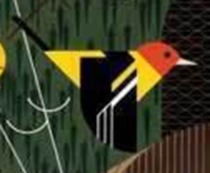 Western Tanager Image.png