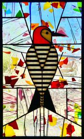 Woodpecker VII