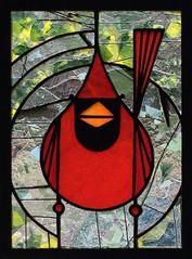Cardinal XV