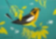 Blackburnian Warbler.png