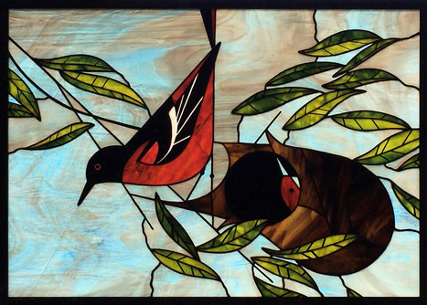 Baltimore Oriole (in Glass)