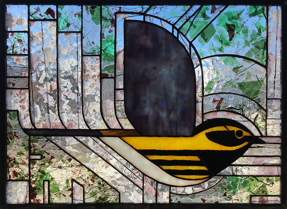 Townsend's Warbler.png