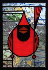Cardinal XX