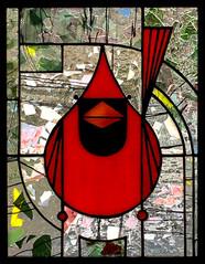 Cardinal XIX