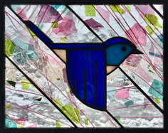 Mountain Bluebird VI
