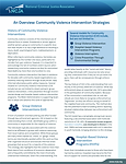 CVI Fact Sheet Thumbnail.png