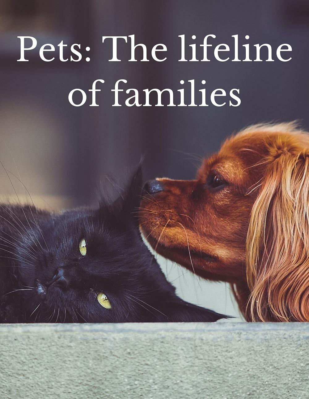 Pets: The lifeline of families