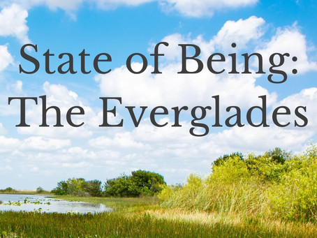 State of Being: The Everglades