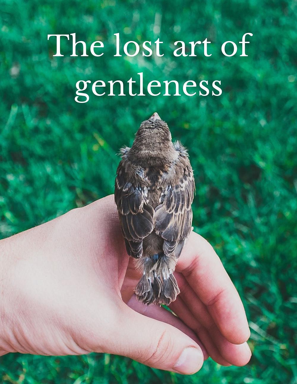 The lost art of gentleness