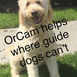 OrCam Helps Where Guide Dogs Can't