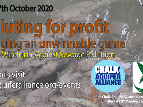 Polluting for Profit.